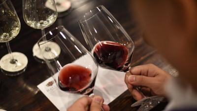 Homewood Delight Wine Tasting event